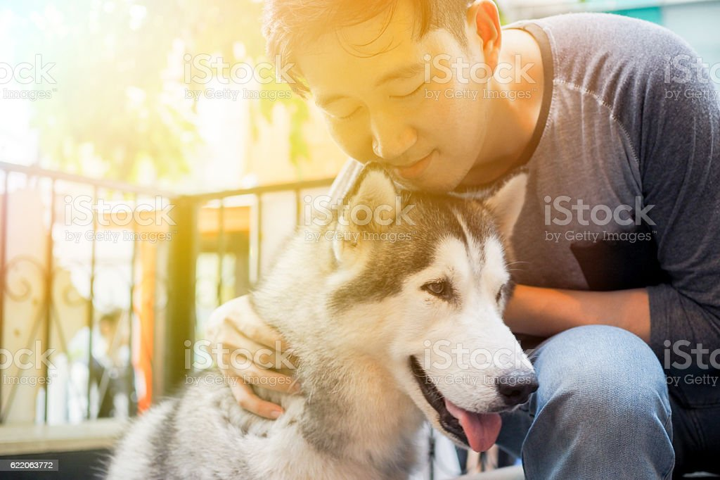 Young Asian male dog owner hugging and embracing the stock photo