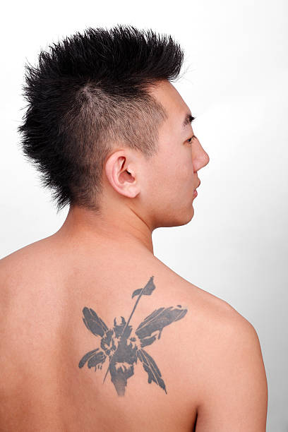 Top 60 Faux Hawk Stock Photos, Pictures, and Images - iStock