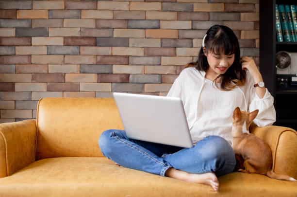 Young Asian woman and Chihuahua puppy sitting togehter on sofa at home stock photo