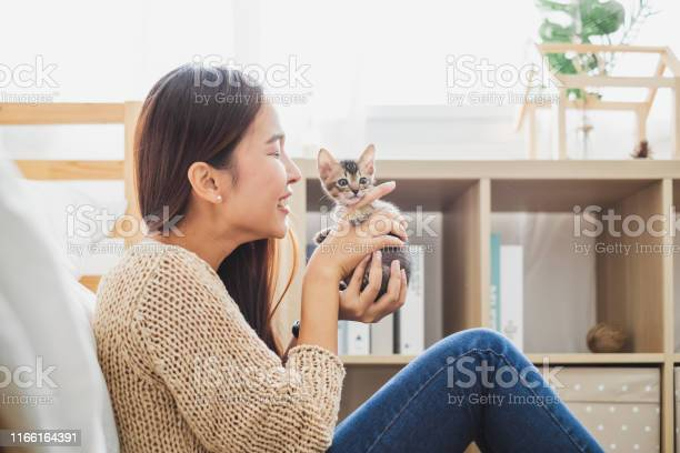 Young asian woman holding and playing with her cute kitten cat with picture id1166164391?b=1&k=6&m=1166164391&s=612x612&h=sktyce m7yc9mx4 7it5ibbcx6e7dd4bcoso2hculqg=