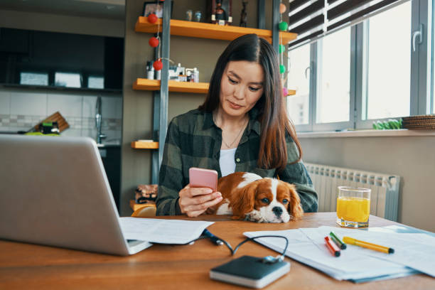 young asian woman working from home - owner laptop smartphone foto e immagini stock