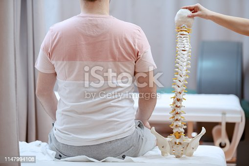 609830806 istock photo Young attractive female doctor holding spine model and truing to realize where is patient's painful place. 1147994108