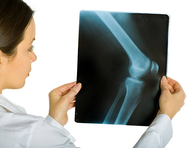 Young attractive female doctor looking x-ray photos stock photo