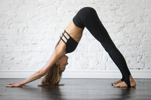 Young attractive woman in adho mukha svanasana pose, studio background Young attractive woman practicing yoga, standing in adho mukha svanasana exercise, Downward facing dog pose, working out, wearing sportswear, black top and pants, indoor full length, studio background shoulder stand stock pictures, royalty-free photos & images