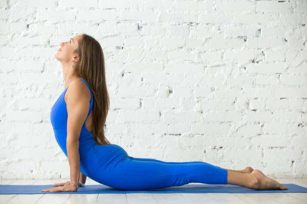 Young attractive woman in Bhujangasana pose, white studio backgr Young happy attractive woman practicing yoga, stretching in Cobra exercise, Bhujangasana pose, working out, wearing sportswear, blue suit, indoor full length, white loft studio background cobra pose stock pictures, royalty-free photos & images