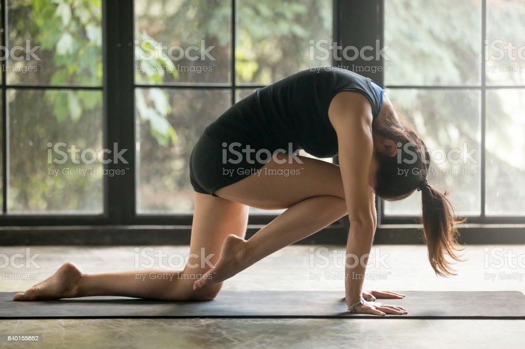 Young attractive woman in Bird dog pose, studio background stock photo