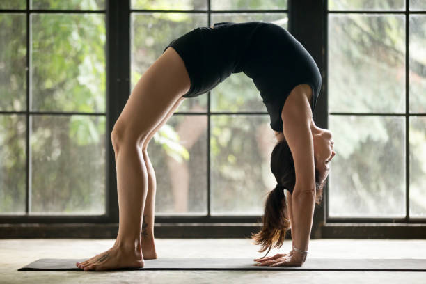 Young attractive woman in Bridge pose, studio background Young attractive woman practicing yoga at home, model stretching in Urdhva Dhanurasana exercise, Bridge pose, working out wearing sportswear black shorts and top, indoor full length, studio background upward facing dog position stock pictures, royalty-free photos & images