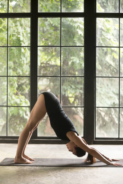 Young attractive woman in Downward facing dog pose, studio background Young attractive woman practicing yoga, stretching in Downward facing dog exercise, adho mukha svanasana pose, working out, wearing sportswear, black shorts, top, indoor full length, studio background namaskard geothermal area stock pictures, royalty-free photos & images