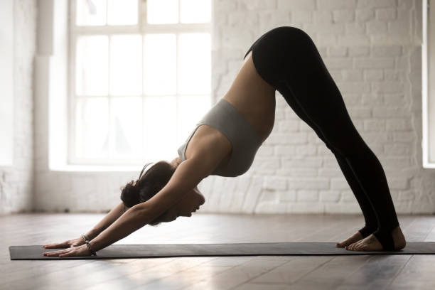 Young attractive woman in Downward facing dog pose, white studio Young attractive woman practicing yoga, standing in Downward facing dog exercise, adho mukha svanasana pose, working out, wearing sportswear bra and pants, full length, white loft studio background namaskard geothermal area stock pictures, royalty-free photos & images