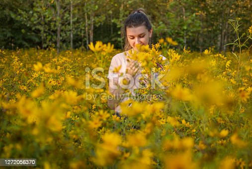 Young attractive woman slowly walking through field of  tall yellow wildflowers at sunset in early fall