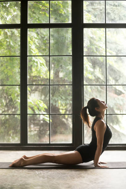 Young attractive woman in upward facing dog exercise, window background Young sporty woman practicing yoga, stretching in upward facing dog exercise, Urdhva mukha shvanasana pose, working out wearing sportswear black shorts, top, indoor full length, copy space background upward facing dog position stock pictures, royalty-free photos & images