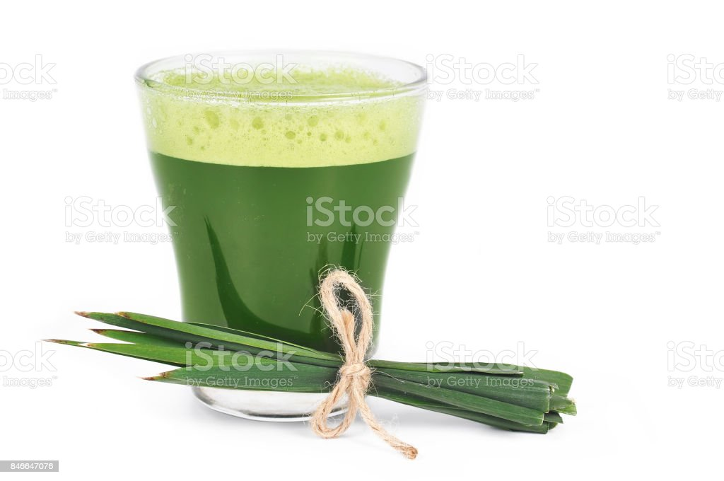 Young barley powder and drink. Detox superfood isolated on white. stock photo