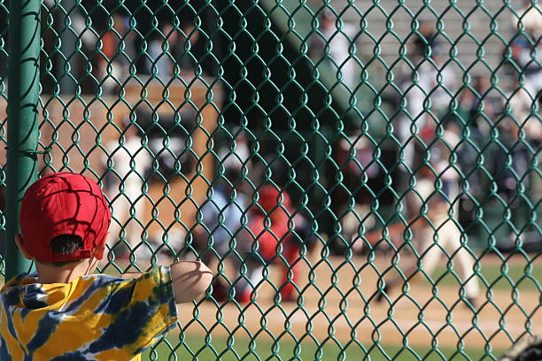 Young baseball fan stock photo