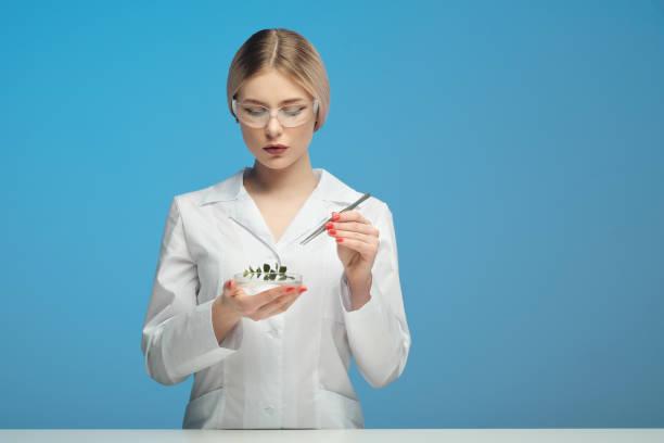 junge schöne blonde frau in weißem mantel und brille auf blauem hintergrund. hält pinzette und das blatt einer pflanze. das konzept der wissenschaft, das studium der pflanzen und produkte. gvo-test. wissenschaftlicher biologe und chemiker, mikrobiologe. - multiple intelligenz umfrage stock-fotos und bilder