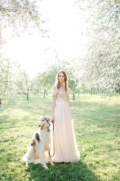 Young beautiful bride in wedding dress with greyhound outdoors – Foto