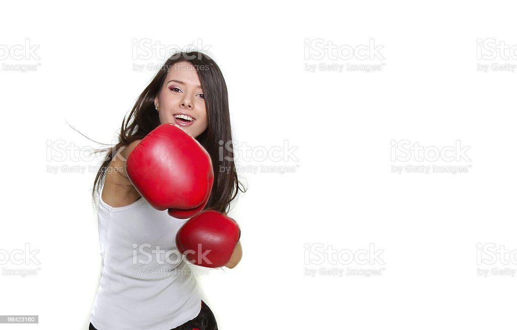 Linda fêmea jovem boxeador sobre branco - foto de acervo