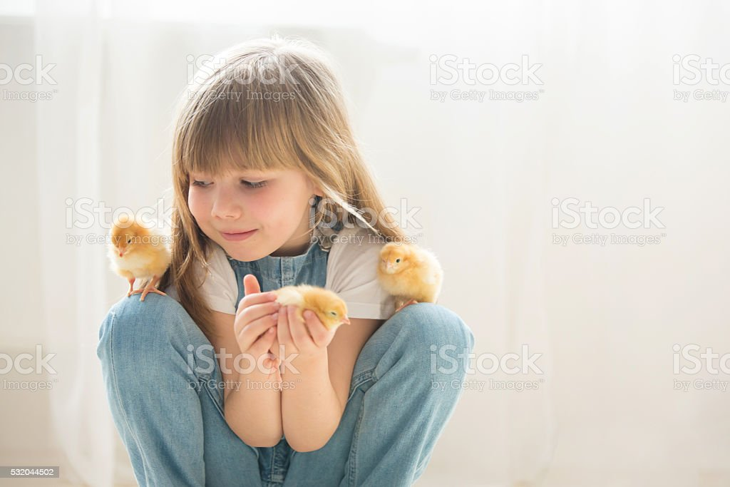 Young beautiful girl, playing with little newborn chick at home stock photo
