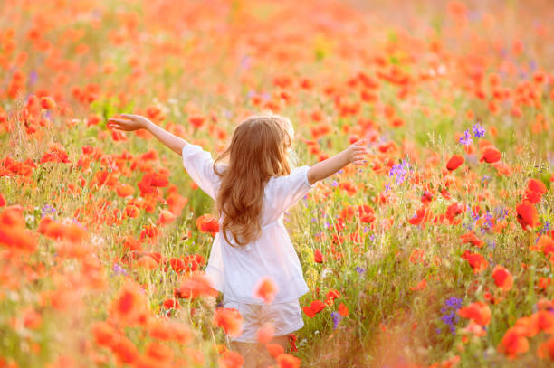 Young beautiful girl walking and dancing through a poppy field, summer outdoor, Toned stock photo