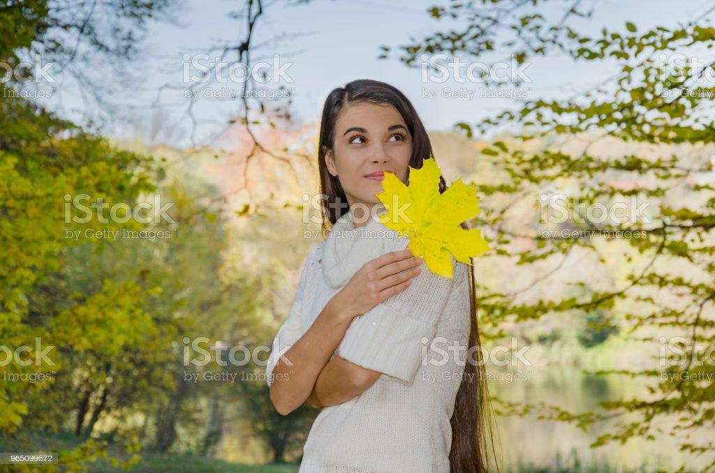 young beautiful girl with yellow maple leaf zbiór zdjęć royalty-free