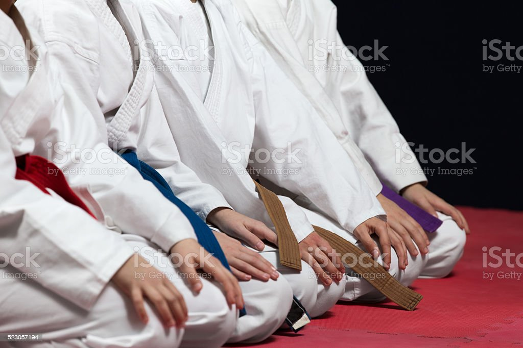 Young, beautiful, successful multi ethical karate kids in karate position. stock photo