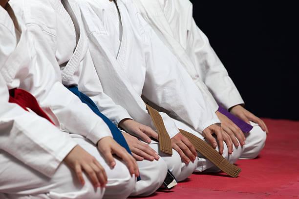 joven, guapo, exitosas multi ética karate niños en el karate posición. - kárate fotografías e imágenes de stock