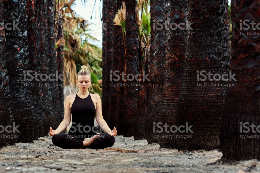 Young Beautiful Woman Doing Meditation In Nature Stock Photo Download Image Now Istock