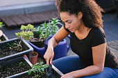 Young beautiful woman gardening, taking care of plants, urban garden.