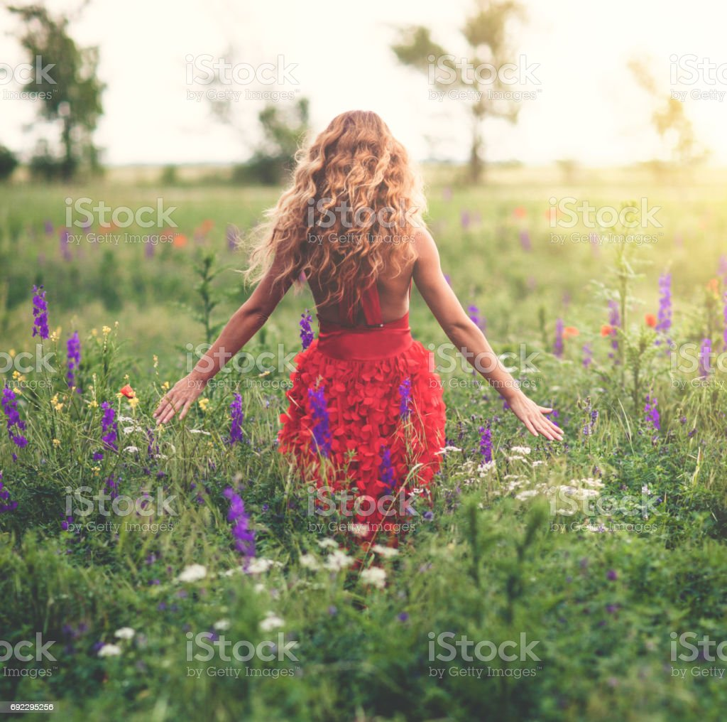 Young beautiful woman in poppy field stock photo