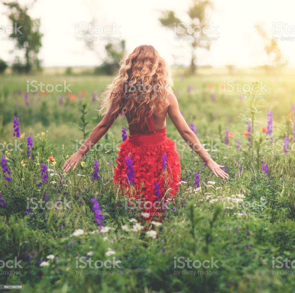 Junge schöne Frau im Mohnfeld – Foto