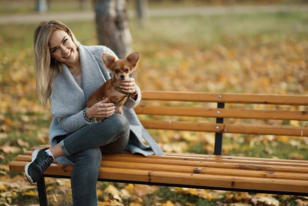 Young beautiful woman in the park with her funny longhaired chihuahua picture id881571942?b=1&k=6&m=881571942&s=612x612&w=0&h=g5oh1f3itzvs642i3trn0rkw8a zoo9iueyewzxb7fo=