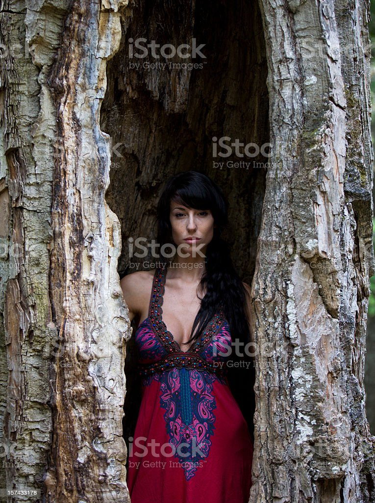Young beautiful woman inside of a tree stock photo