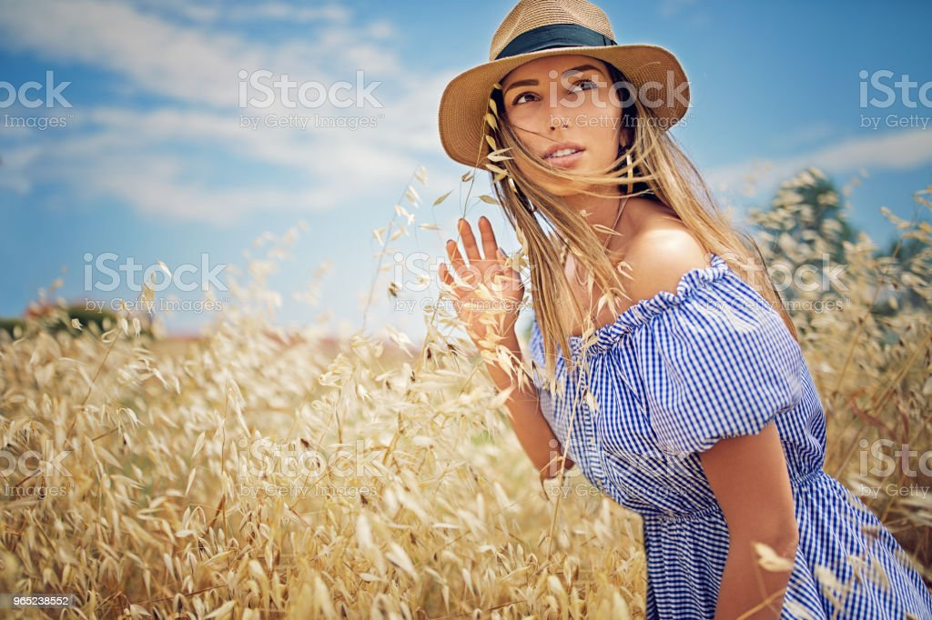 Young beautiful woman is walking in the field of high grass zbiór zdjęć royalty-free