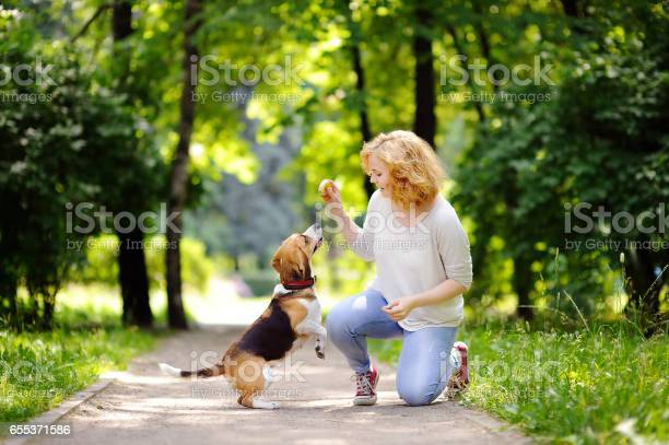 Young beautiful woman playing with beagle dog picture id655371586?b=1&k=6&m=655371586&s=612x612&h=ffffwubriyqjoosf1b6tjwubvuoyuh14vq2g6av5bp0=