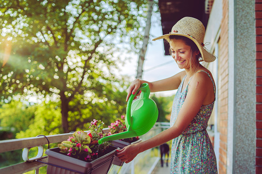 Young beautiful woman watering plants flowers on her balcony of the home house using bucket with water wearing summer dress and hat in the spring autumn evening day