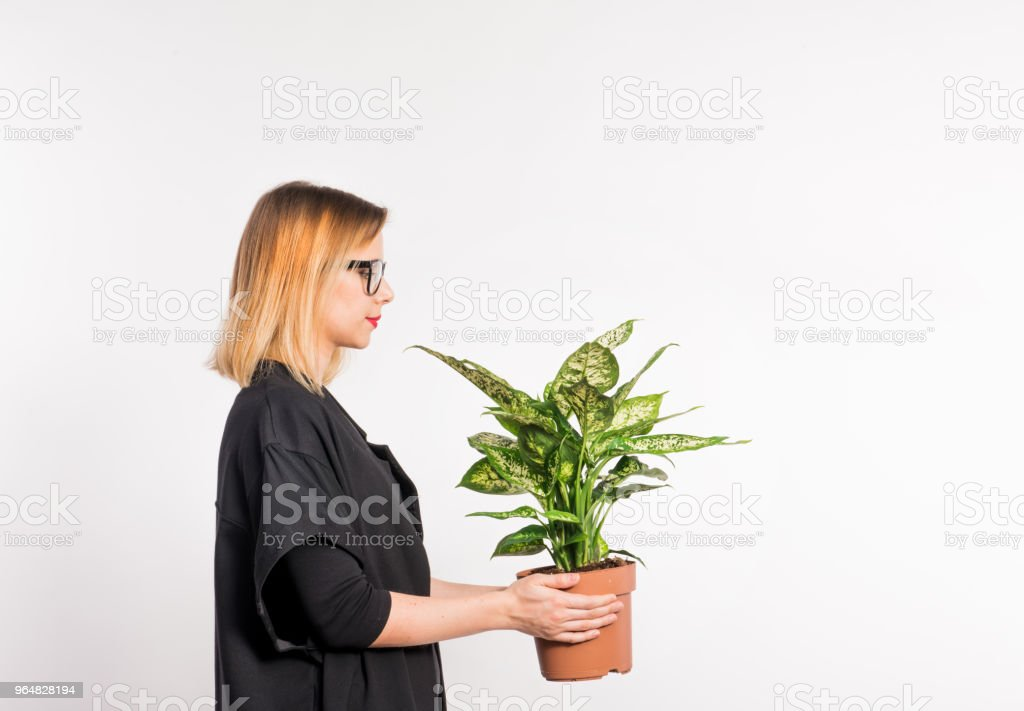 Young beautiful woman with black clothes in studio on white background, holding a plant. royalty-free stock photo