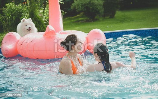 istock young beautiful women swimming in the pool ( with dog) 1253929989