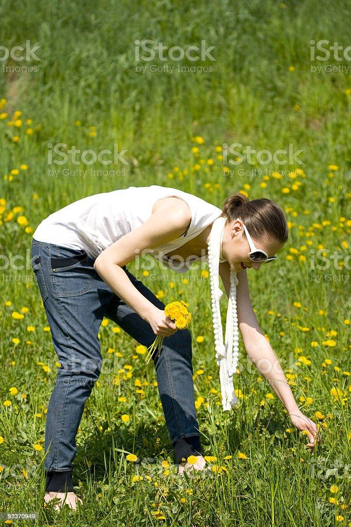 young beautifull woman picking fresh flowers royalty-free stock photo