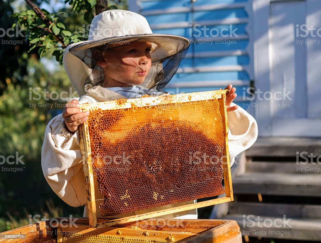 Young beekeeper boy holding frame of honeycomb royalty-free stock photo