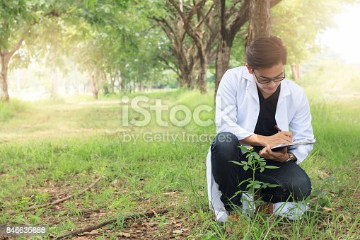 istock Young Biology researcher Keep specifics of sample flowers in a nature park, Copy space 846635688