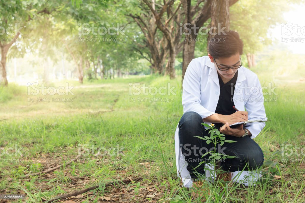 Young Biology researcher Keep specifics of sample flowers in a nature park, Copy space stock photo