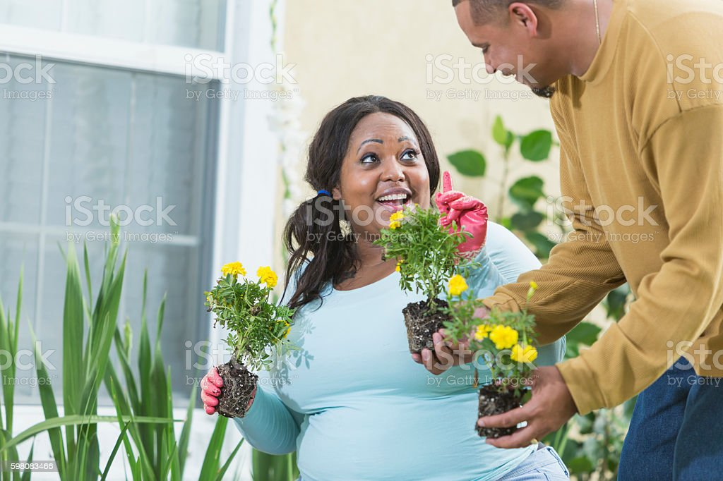 Young black couple gardening, planting flowers stock photo