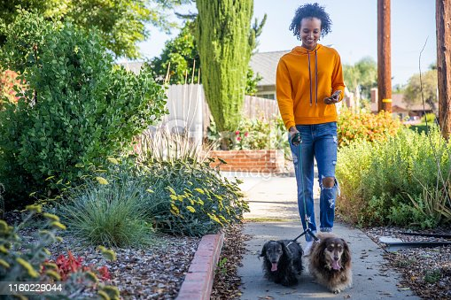 A young black woman walking dogs while holding a smartphone