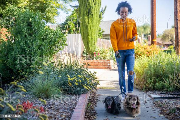 Young black woman walking dogs with smartphone picture id1160229044?b=1&k=6&m=1160229044&s=612x612&h=loo9nuf8lctfuhvcegzgntesuzcjqxy6d2n9 rmjeay=