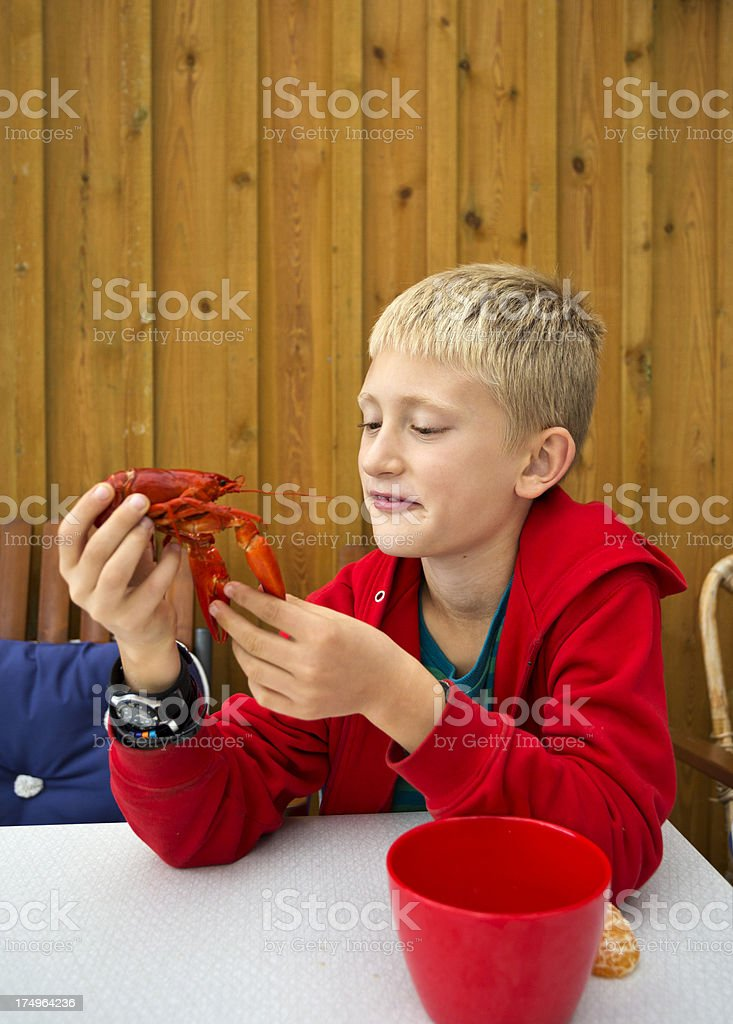 Young, blond boy studying crayfish. Male or female? royalty-free stock photo