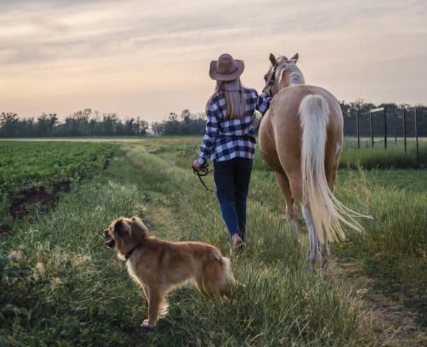 Young blonde girl in a hat and a plaid shirt walks with a horse and picture id1175925133?b=1&k=6&m=1175925133&s=612x612&w=0&h=kzp33kj41rnrqvk7txfswgu3u371uy0qioawnhplnxo=