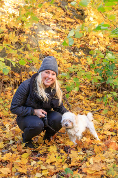 Young blonde Swedish woman with a dog stock photo
