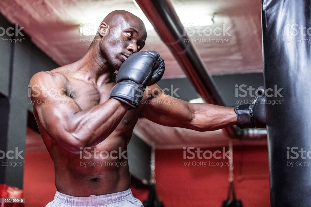 Young Bodybuilder boxing a bag stock photo