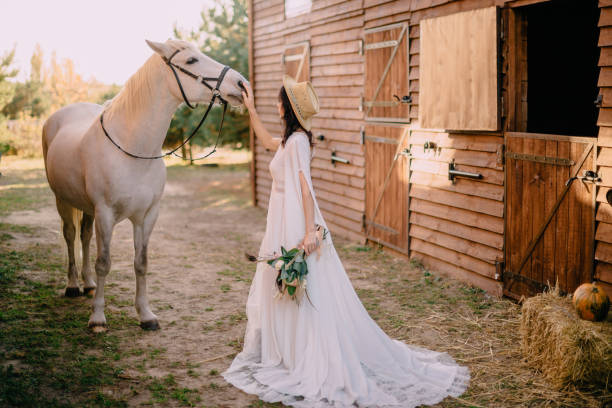 young boho style bride is stroking white horse stock photo