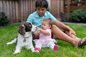 An ethnic 10 year old boy is sitting outside with his baby sister and their dog. The baby girl is holding the dogs face and smiling.