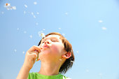 Happy Young half Asian boy (4 years old) holding and blowing on a dandelion in front of him with the seeds dispersing on location with blue sky in the background